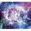 中古邦楽CD PassCode / VIRTUAL