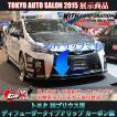 トヨタ 30プリウス用 エアロパーツ ディフューザータイプ Fリップ カーボン製 ウィズコーポレーション製オリジナル