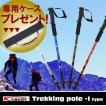 登山 ストック トレッキングポール コンパクト ウォーキング I型 ステッキ 軽量 ポール ケース 付き