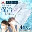 【P10倍】保冷剤 マスク 用 4個セット 日本製 ミニ 10...