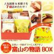 富山の物語BOX 小 チューリップ畑と気球
