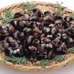 冷凍食品 業務用 冷凍殻付しじみIQF 1kg シジミ 蜆 椀種 和食 貝 カイ かい