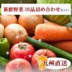 九州産地直送!新鮮野菜10品詰め合わせセット!