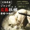 (カキ 牡蠣 かき)広島牡蠣(かき)[冷凍] 1kgパック送料無料