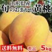 黄桃 秀品 送料無料 旬のおまかせ 5kg 山形県産 桃 もも 産地直送
