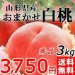 白桃 3kg 送料無料 秀品 山形県産 桃 もも 産地直送