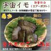 国産 自然栽培宇宙イモ/厳選 形の良いエアーポテト2kgセット/そらいも/ヤマノイモ/むかご/たこ焼きの具・お好み焼きの具