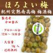 中田食品 梅酒梅 1kg ほろよい梅 梅酒うめ 紀州南高梅 完熟 送料無料