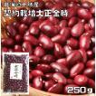 豆力 契約栽培十勝産 大正金時 250g