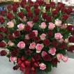 赤バラとピンクバラの大きなアレンジメント