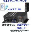 プレーヤーアンプ 2ch Output power Amplifier AV USB SD/MMCカードのMP3 Digital Player