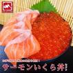 生サーモンいくらセット サーモン 12切+ いくら 250g 海鮮グルメセット 2人〜3人前 たいの鯛 ギフト プレゼント 刺身 海鮮丼 手巻き寿司