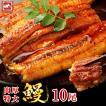 超特大 うなぎ 蒲焼き メガサイズ 360g-400g ×10本 ウナギ 鰻 ギフト