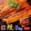 超特大 うなぎ 蒲焼き メガサイズ 5kg 12-13尾(1尾360g-400g) ウナギ 鰻 ギフト