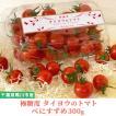 トマト フルーツトマト 産地直送 千葉県産 お取り寄せ タイヨウのトマトべにすずめパック 300g