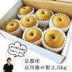 【贈り物にも】京丹後の梨2.5kg(5〜9個) 秀品 いま食べ頃の品種を直送 京丹後久美浜産