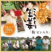 こうのとり生姜の粉 ビン入り10g ひょうご安心ブランド  国産しょうが100% 無添加  兵庫県豊岡市産