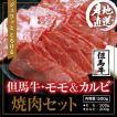 【但馬牛】モモ&カルビ 焼肉セット500g (但馬牛モモ300g+カルビ200g+牛脂) 精肉店から新鮮直送
