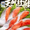 \年末配送OK/ 紅鮭 最高級 天然紅鮭 半身/切り身が選べる ギフト 贅沢厚切りカットでお届け 紅鮭 さけ サケ 内祝 出産内祝い