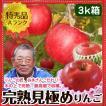 送料無料 りんご特秀品 谷本さんこだわりの完熟リンゴ7〜9個入り 3kg箱 早生ふじ・シナノスイート他