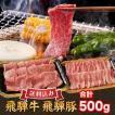 ギフト対応可 BBQ 国産 焼き肉セット すき焼き 肉 送料無料 牛肉 豚肉 合計500g 飛騨牛 ロース 200g 飛騨豚 バラ 300g  A5、A4ランク限定