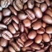 自家焙煎 エチオピア モカ イルガチェフ コーヒー豆 1k シティーロースト