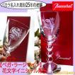 バカラ グラス ワイングラス  名入れ 人気 ギフト 誕生日 贈り物 急ぎ対応 ベガワイン花文字