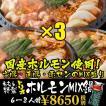 大阪名物たむほる特製・たむけんの韓国風ホルモン鍋・もつ鍋セット・ホルモンMIX鍋トリオ6〜8人前