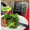 農薬不使用 小さなベビーリーフ 丹里菜Premium-AKARINA-8パックセット