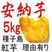 安納芋 訳あり 5kg 種子島産 日本一の安さに挑戦中!送料上乗せしても絶対お得。もちろん美味しさも保障します。更にさつまいも粉200gを無料進呈中!