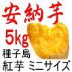 安納芋 チビころ(ミニの2S)/5kg/種子島産/子供応援企画。だからこそ日本一の安さに挑戦中!送料上乗せでも絶対お得、更にさつまいも粉無料進呈中