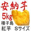 安納芋 Sサイズ/5kg/種子島産/日本一の安さに挑戦中!送料上乗せしても絶対お得。もちろん美味しさも保障します。更にさつまいも粉200g無料進呈中