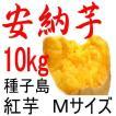 安納芋 Mサイズ/10kg/種子島産/贈り物には最適。 だからこそ日本一の安さに挑戦中!送料上乗せしても絶対お得。更にさつまいも粉200g無料進呈中