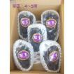ぶどう 紫玉 4〜5房 京都府産