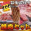 亀山社中 おためし 焼肉セット(華咲きハラミ・やわらかカルビ合計600g)(お試し BBQ バーベキュー ギフト プレゼントにもどうぞ  お中元 お歳暮)