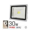 LED投光器 30W 300W相当 省エネ LEDライト 防水 6個セット