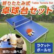 ポータブル 卓球 卓球台セット ピンポン 折りたたみテーブル ラケット ボール パーティーグッズ