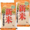 30年産 新米 徳島産 コシヒカリ 10k...