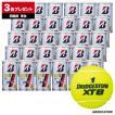 ブリヂストン(BRIDGESTONE) テニスボール XT-8(エックスティエイト)2球入 1箱(33缶/66球)