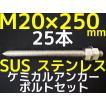 ケミカル アンカーボルト セット ステンレス SUS M20×250mm 25本 寸切ボルト1本 ナット2個 ワッシャー1個 Vカット 両面カット SUS304「取寄せ品」