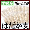 愛媛県産はだか麦小分け18g×18袋