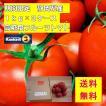 産地直送 フルーツトマト 静岡県産   送料無料(北海道・沖縄・離島等除く) 「サンクスフルーツトマト」 1kg×3箱