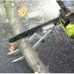 チェンソーバディー (CSB001) チェンソーに取り付けて小径木の切断