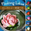 〔約9.5cm〕水に浮かぶ 睡蓮の造花 フローティングロ...