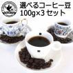 父の日ギフト 包装可  選べる レギュラー コーヒー 飲み比べセット 100g×3銘柄 送料無料 自家焙煎 TIRORIYACOFFEE