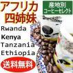 送料無料【産地別コーヒー飲み比べセット】アフリカ四姉妹 100g×4袋 自家焙煎 スペシャルティ TIRORIYACOFFEE