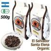 お徳用 レギュラーコーヒー豆 エルサルバドル ロマ・ラ・グロリア パカマラ 500g 定価3,600円から10%OFF シティロースト TIRORIYACOFFEE