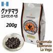 レギュラーコーヒー豆 グァテマラ サンフアン農園 テキシク 200g シティロースト/中煎り