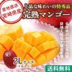 マンゴー フルーツ Fruits 御中元 ギフト 特秀 宮崎マンゴー 贈答用1玉 2Lサイズ 350g以上 産地直送 送料無料 お中元 果物