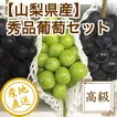 ぶどう フルーツ Fruits 秀品葡萄2色セット シャインマスカット と 黒葡萄 2kg箱 2〜4房入り 山梨県産 産地直送 送料無料 フルーツギフト